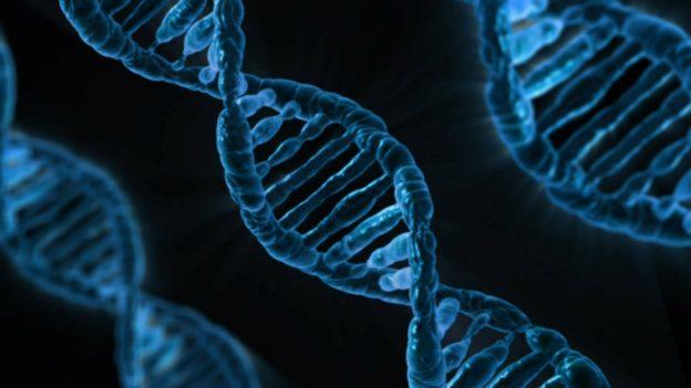 gene varient